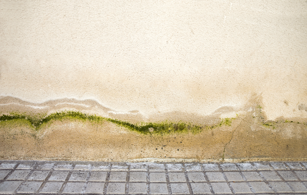 signs you need to paint your home: moisture stains